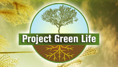 Project Green Life web banner ads