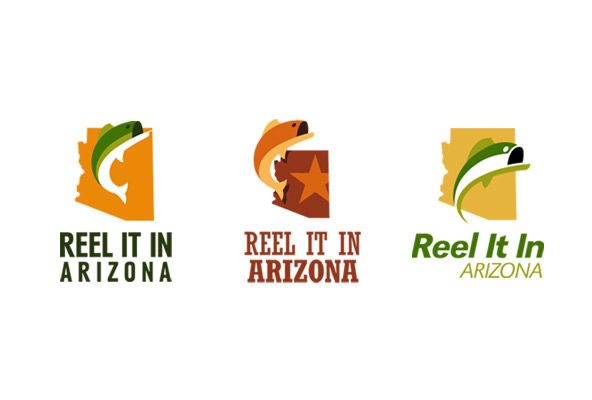 Reel It In Arizona concept logos
